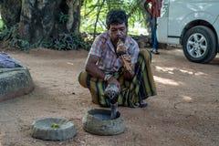 Schlangenbeschwörerspiele mit indischer Kobra stockbild