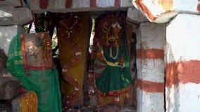 Schlangentempel in Indien drau?en stock video