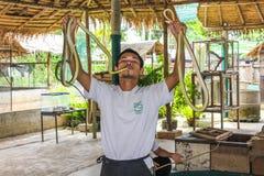 Schlangentrainer mit Königskobra Stockfoto