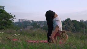 Schlanke Frau führt Asanas auf der Lichtung im Wald, tun Gymnastik von Yoga Surya Namaskar durch stock video footage