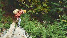Schlankes Mädchen, das entlang einen Klotz durch einen Gebirgsfluss im Waldtourismus in der Kaukasus-Reserve geht Gehen von stock video