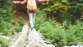 Schlankes Mädchen, das entlang einen Klotz durch einen Gebirgsfluss im Waldtourismus in der Kaukasus-Reserve geht Gehen von stock video footage