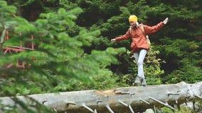 Schlankes Mädchen, das entlang einen Klotz durch einen Gebirgsfluss im Waldtourismus in der Kaukasus-Reserve geht Geht in Richtun stock video