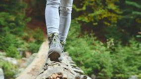 Schlankes Mädchen, das entlang einen Klotz durch einen Gebirgsfluss im Waldtourismus in der Kaukasus-Reserve geht Geht in Richtun stock video footage