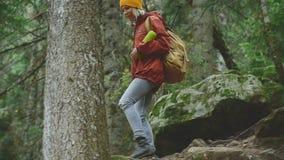 Schlankes Mädchen geht den Weg im Koniferenwaldtourismus in der Kaukasus-Reserve hinunter Nähert sich der Kamera stock footage