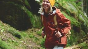 Schlankes Mädchen geht entlang den Weg zur Spitze im Koniferenwaldtourismus in der Kaukasus-Reserve Nähert sich stock video footage