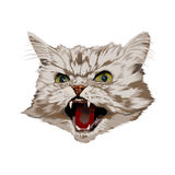 Schlechte Katze vektor abbildung