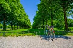 Schleissheim, Duitsland - Juli 30, 2015: Grote groene die bomen in perfecte opstelling worden geplant die tot een weg van gras le Stock Foto's