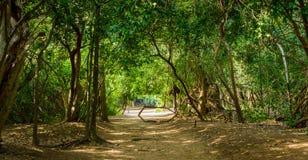 Schleppen Sie an Leamsala-Weise zu Höhle Phraya Nakorn, Thailand Nationalpark Khao Sam Roi Yot lizenzfreie stockfotografie
