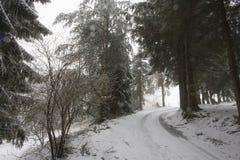 Schleppen Sie und Landschaft von schneebedeckten Vosges-Bergen, Frankreich Stockfotografie