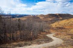 Schleppen Sie zwar den schöne Glenbow-Ranch-provinziellen Park in Alberta lizenzfreies stockfoto