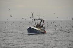 Schleppnetzfischer geht zu Pittenweem-Pfeife Schottland Großbritannien zurück Stockfoto