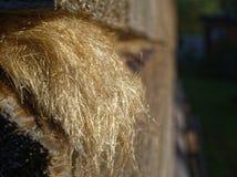 Schleppseil haftet heraus zwischen den Stangen in der Wand des Hauses lizenzfreies stockfoto