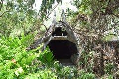Schlägerhöhle Stockfoto