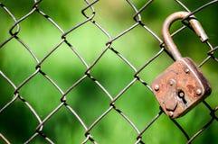 Schließen Sie auf das Gitter zu stockfotos
