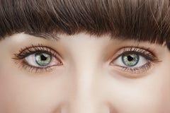 Schließen Sie herauf Ansicht der Augen einer jungen Frau Stockfoto