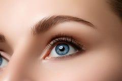 Schließen Sie herauf Ansicht des schönen blauen weiblichen Auges Lizenzfreie Stockfotos
