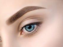 Schließen Sie herauf Ansicht des schönen blauen weiblichen Auges Stockfoto