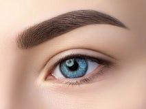 Schließen Sie herauf Ansicht des schönen blauen weiblichen Auges Stockbild
