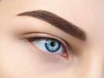 Schließen Sie herauf Ansicht des schönen blauen weiblichen Auges Lizenzfreies Stockbild