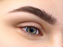 Schließen Sie herauf Ansicht des schönen grünen weiblichen Auges Lizenzfreies Stockbild