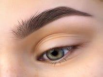 Schließen Sie herauf Ansicht des schönen grünen weiblichen Auges Stockfotos