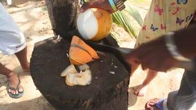 Schließen Sie herauf Ansicht eines lokalen Mannes, der neues Kokosnussgetränk für Kleinkind schneidet stock video footage