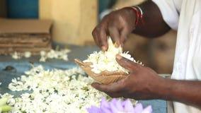 Schließen Sie herauf Ansicht von den Händen, die Blumenvorkehrungen für Tempelangebote in Kandy, Sri Lanka treffen stock video footage