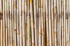 Schließen Sie herauf Bambuszaunhintergrund Stockbild
