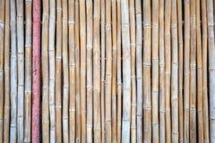 Schließen Sie herauf Bambuszaunhintergrund Lizenzfreies Stockfoto