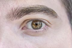 Schließen Sie herauf Bild von braunen Augen von einem jungen Mann Lizenzfreie Stockfotografie