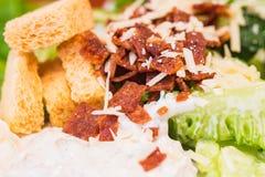 Schließen Sie herauf Caesar-Salat Lizenzfreies Stockbild