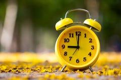 Schließen Sie herauf den gelben Wecker, der auf fallenden gelben Blumenesprit gesetzt wird Lizenzfreie Stockbilder
