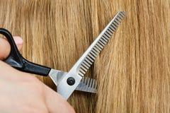Schließen Sie herauf Detail Spezielle Scheren, die Haar schneiden Stockfoto