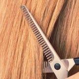 Schließen Sie herauf Detail Spezielle Scheren, die Haar schneiden Lizenzfreie Stockfotografie