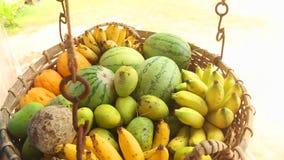 Schließen Sie herauf die Ansicht des Obstkorbes schwingend im Wind in Weligama, Sri Lanka Tropische Frucht ist das ganze Jahr hin stock footage