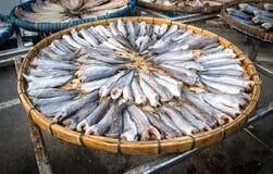 schließen Sie herauf die Fische, die auf dem Korb trocken sind, der für Blitz im Freien ist Lizenzfreie Stockbilder