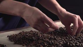 Schließen Sie herauf die Frauenhände, die geringe Qualität ` s von verrosteten Kaffeebohnen sortieren stock video
