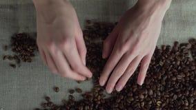 Schließen Sie herauf die Frauenhände, die geringe Qualität ` s von verrosteten Kaffeebohnen sortieren stock video footage
