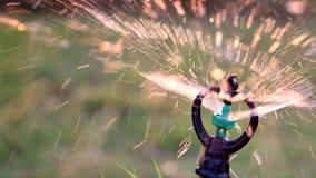 Schließen Sie herauf die Wasserberieselungsanlagen-Spraybewässerung stock footage