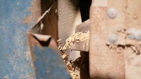 Schließen Sie herauf flüssige alte Reismühle des Paddys stock footage
