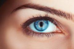 Schließen Sie herauf Foto des blauen Auges der Frau Stockfoto
