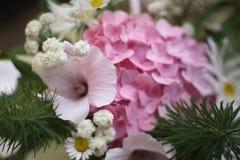 Schließen Sie herauf Foto des verfassten (sentence Blumenstraußes der Hortensie, der Kamille und der dasies stockfotografie