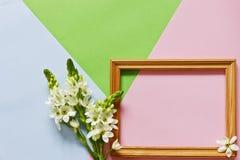 Schließen Sie herauf Foto für glücklichen Mutter ` s Tag auf dem Pastell-Süßigkeits-Farbhintergrund Lizenzfreie Stockfotos