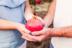 Schließen Sie herauf Granatapfelfrucht in schwangere Frau ` s und Mann ` s Hände am Sonnenunterganglicht Paare in der Liebe im Ga Lizenzfreies Stockfoto