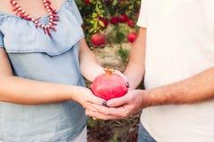 Schließen Sie herauf Granatapfelfrucht in schwangere Frau ` s und Mann ` s Hände am Sonnenunterganglicht Paare in der Liebe im Ga Lizenzfreie Stockfotos