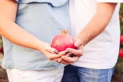 Schließen Sie herauf Granatapfelfrucht in schwangere Frau ` s und Mann ` s Hände am Sonnenunterganglicht Paare in der Liebe im Ga Lizenzfreie Stockbilder