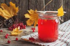 Schließen Sie herauf heißes rotes Getränk im Glas mit Moosbeer- oder Viburnumbeere auf Holztisch mit Herbstlaub am Dorf Lebensmit Lizenzfreie Stockfotos