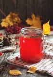 Schließen Sie herauf heißes rotes Getränk im Glas mit Moosbeer- oder Viburnumbeere auf Holztisch mit Herbstlaub am Dorf Lebensmit Lizenzfreie Stockfotografie