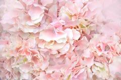 Schließen Sie herauf rosa Zusammenfassungshintergrund des weichen Lichtes der künstlichen Blumen Stockfotografie